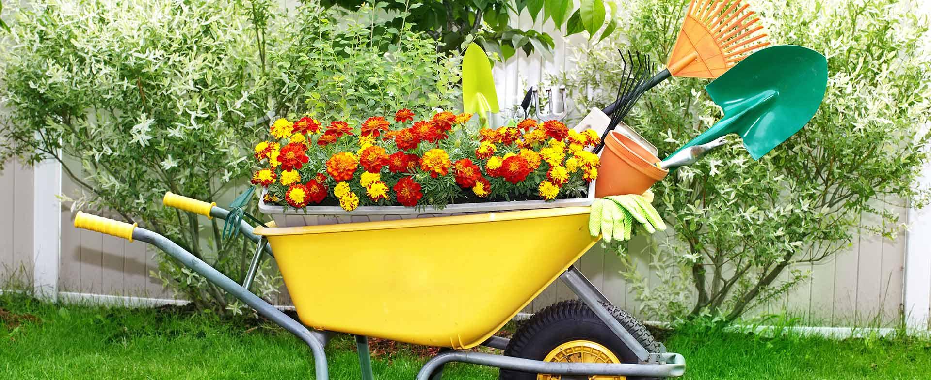 Gardeners Arkley